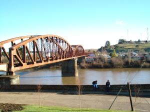 puente sobre cholchol 2
